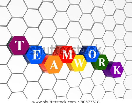 teamwork in colour hexahedrons in cellular structure Stock photo © marinini