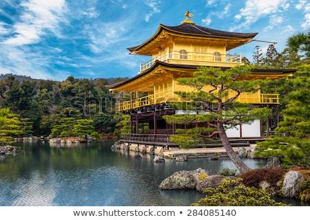 Or temple kyoto Japon floraison rose Photo stock © dsmsoft