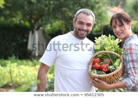 A couple taking care of their vegetable garden. Stock photo © photography33