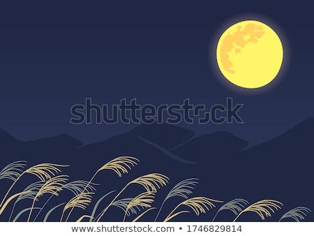 Full Harvest Moon Stock photo © ArenaCreative
