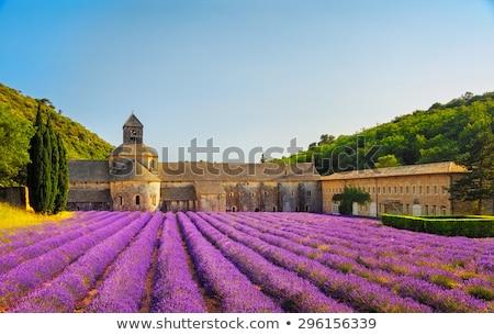 abdij · Frankrijk · veld · kerk · reizen · architectuur - stockfoto © bertl123
