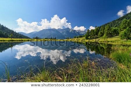 val di sole   covel lake stock photo © antonio-s