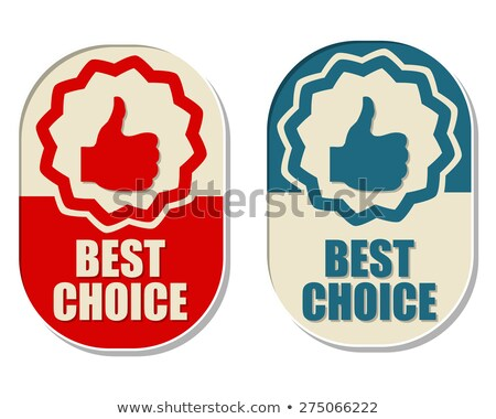 best choice and thumb up signs, two elliptical labels Stock photo © marinini