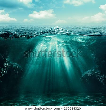Sea wave with sun flare  Stock photo © papa1266