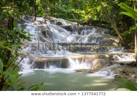 Jamaica. Dunn's River Falls. Stock photo © master1305