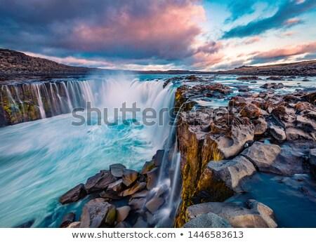 Potężny wodospad Islandia deszczowy dzień piękna Zdjęcia stock © elxeneize