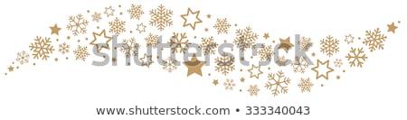 Decorative Snow flake stock photo © Fosin