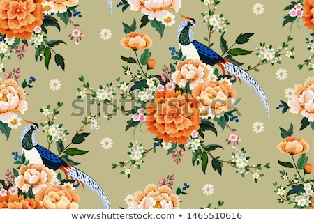 plums in vintage style colored vector illustration stock photo © conceptcafe