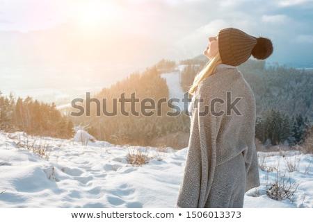 Snowfall in the mountains Stock photo © klikk