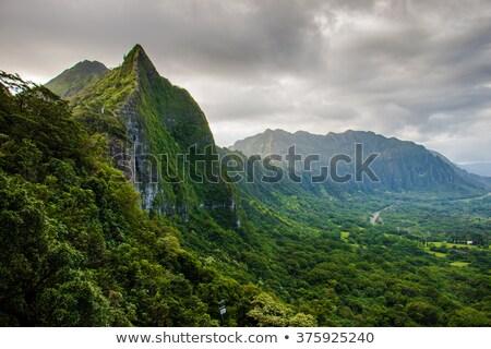 Hawaii görmek dağ batı ada Stok fotoğraf © kraskoff