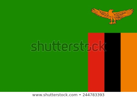 Zászló Zambia illusztráció fehér felirat zöld Stock fotó © Lom