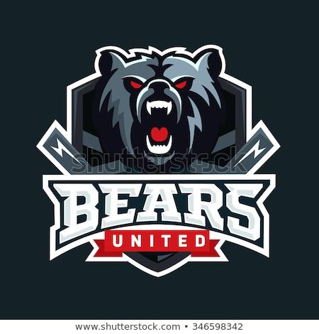 Bear head. Angry bear logo  Hockey emblem Stock photo © popaukropa