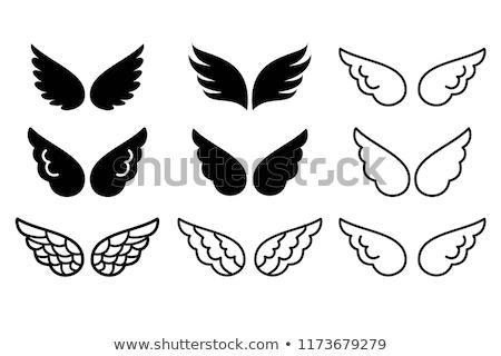 крыло · икона · вектора · тень · белый · бизнеса - Сток-фото © frescomovie
