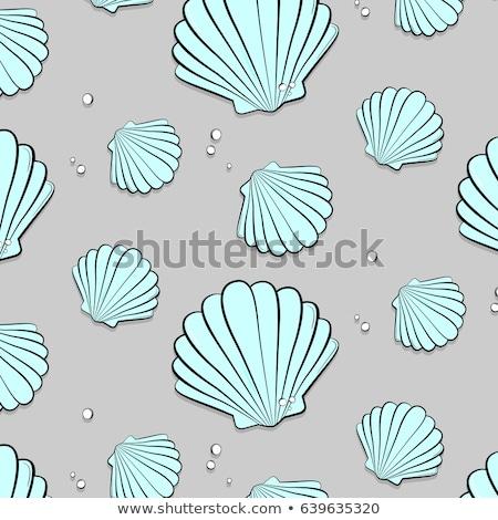 precious blue seashell Stock photo © blackmoon979