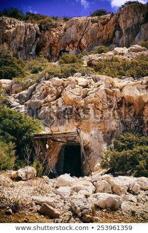 Mine ingresso isola illustrazione albero panorama Foto d'archivio © bluering