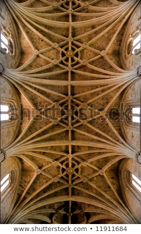 ceiling cathedral of leon in spain stock photo © photooiasson
