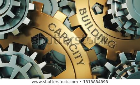 üzlet képességek arany sebességváltó mechanizmus fogaskerék Stock fotó © tashatuvango