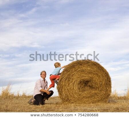 Homem ajuda menino subir feno fardo Foto stock © IS2