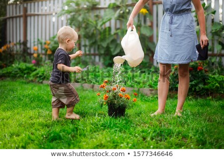 Happy children in flower garden Stock photo © bluering