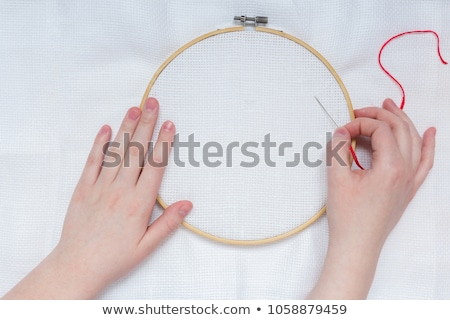 Flowers Hoop Needle Embroidery Stock photo © lenm