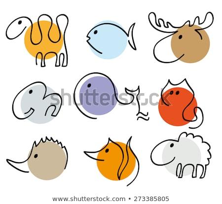Gato cara linear estilo casa animal de estimação Foto stock © MaryValery