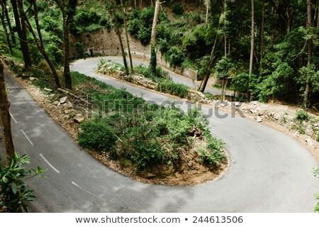 Eğri dağlar yol Portekiz boş yüksek Stok fotoğraf © joyr