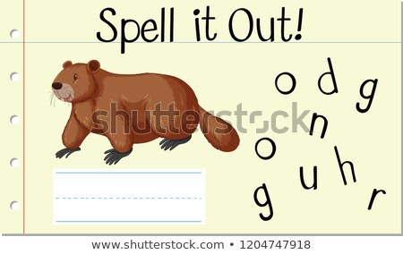 Spell English word groundhog Stock photo © bluering