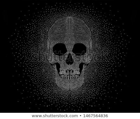 Skulls Graphic Design Stock photo © Krisdog