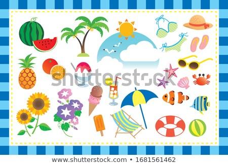 Verão laranja bola de praia ícone ilustração projeto Foto stock © svvell