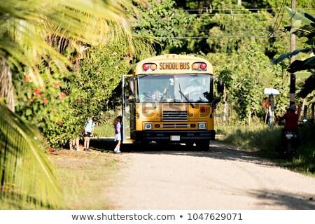 okul · otobüsü · ülke · görmek · kırsal · yol - stok fotoğraf © lopolo