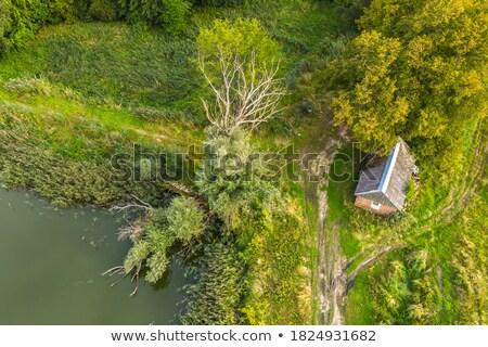 старые заброшенный фермы дома разорение заброшенный Сток-фото © lovleah