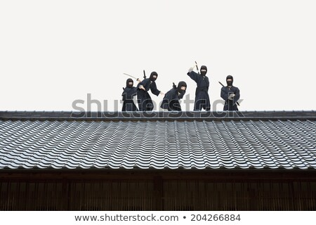 Ninja espada telhado ilustração casa casa Foto stock © colematt