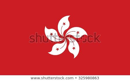 Badge design for HongKong flag Stock photo © colematt