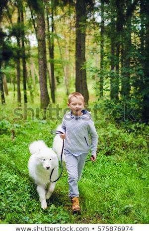 Dois meninos corrida parque grama feliz Foto stock © galitskaya