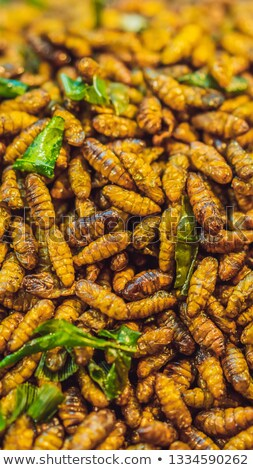 Fried insects, Bugs fried on Street food in thailand VERTICAL FORMAT for Instagram mobile story or s Stock photo © galitskaya
