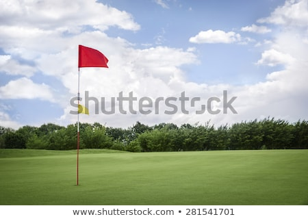Flag on golf fairway with copyspace. Stock photo © lichtmeister