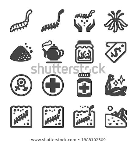 cordyceps icon set Stock photo © bspsupanut
