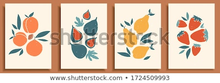 Isolated figs, design colorful vector illustration. Collection o Stock photo © cosveta