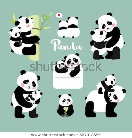 Madre baby panda sorriso amore giovani Foto d'archivio © tigatelu