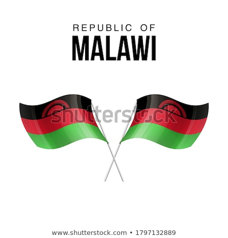 Malawi flag, vector illustration on a white background Stock photo © butenkow
