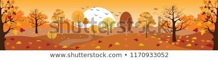 ősz jelenet fa ősz pezsgő nap Stock fotó © ldambies