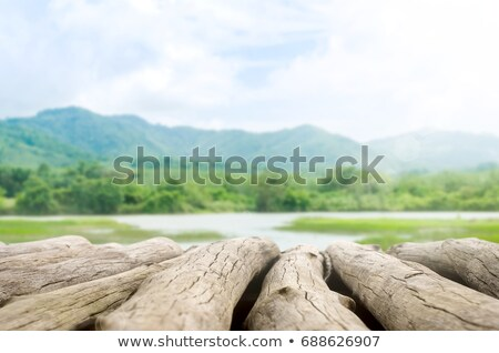 perspective old wood texture in front of blue skies stock photo © koratmember