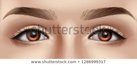 girl eye contact Stock photo © milsiart