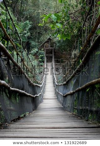 Stock photo: Rope walkway through