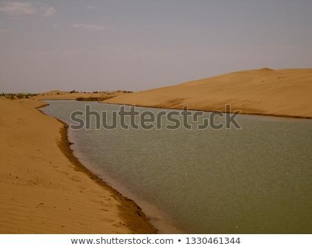 Stream flowing through arid hills Stock photo © wildnerdpix