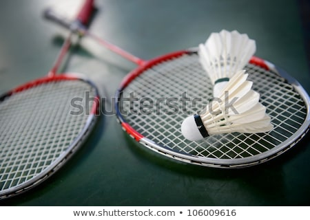 Badminton dwa płytki kolor fitness Zdjęcia stock © lightpoet