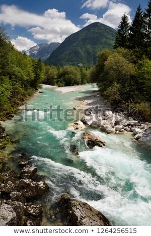 冷たい 高山 川 水 スロベニア 春 ストックフォト © Bertl123