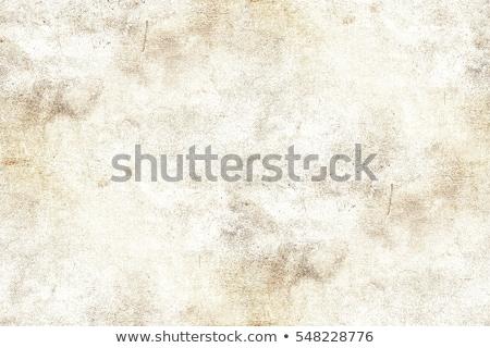 Papieru klasyczny wzór kwiat projektu Zdjęcia stock © ryhor