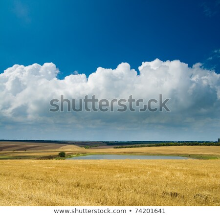 autumn in steppe and low clouds Stock photo © mycola