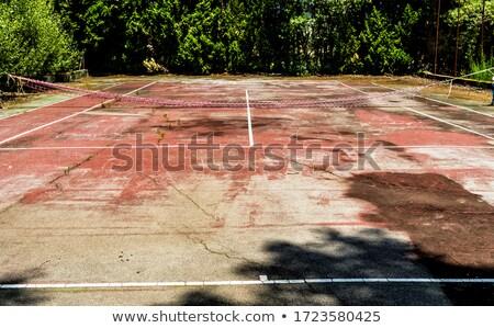 Starych kort tenisowy powierzchnia zaniedbany tekstury Zdjęcia stock © paulfleet